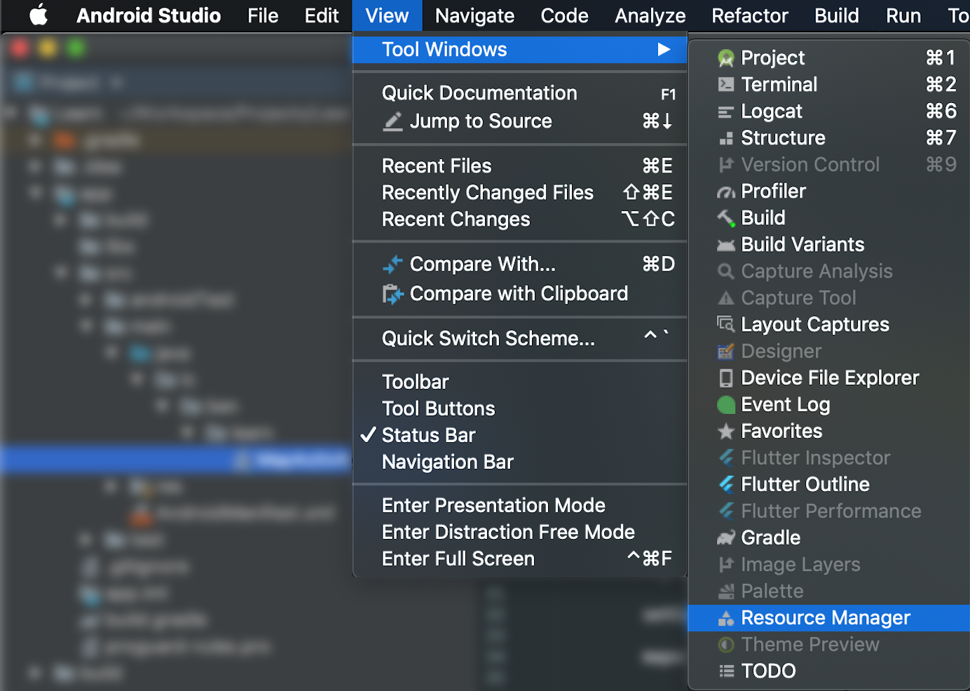 Android Studio Resource Manager Path